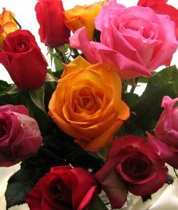 kwiaty dla studentów