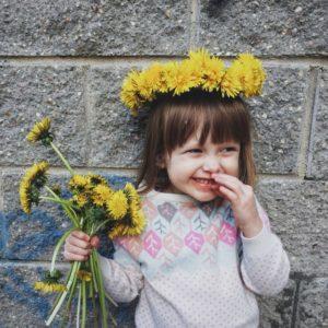 kwiaty cięte
